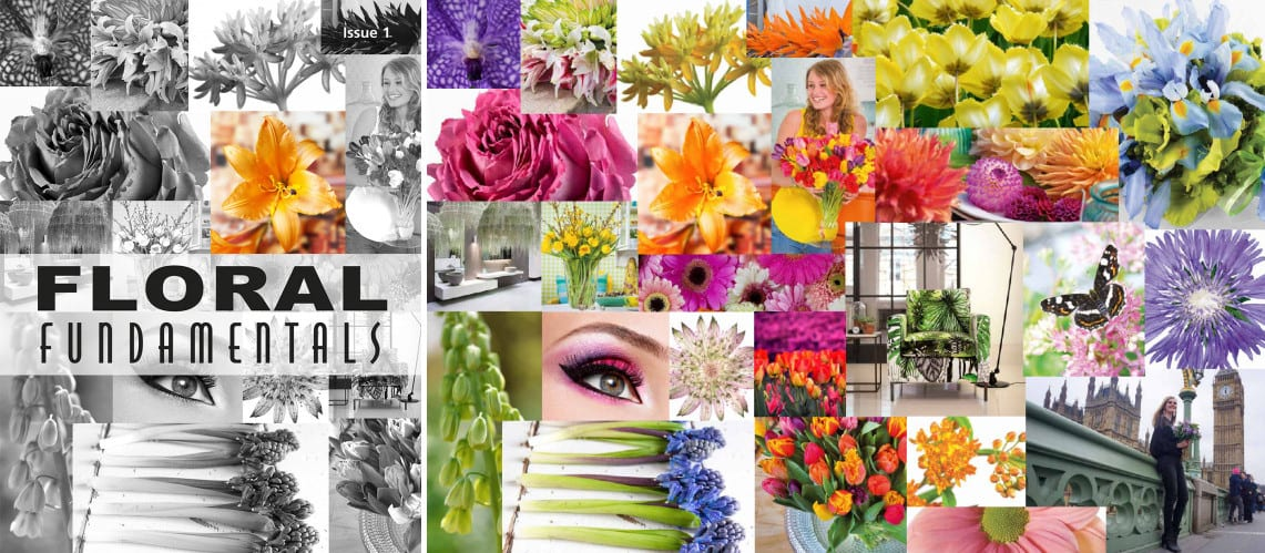 Floral Fundamentals Digital Magazine